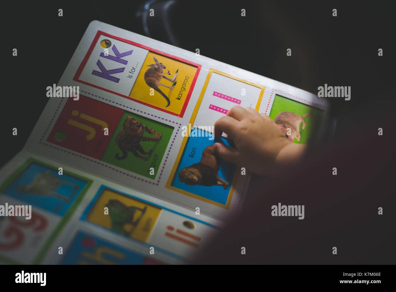 Un enfant lit un livre pour enfants. Photo Stock