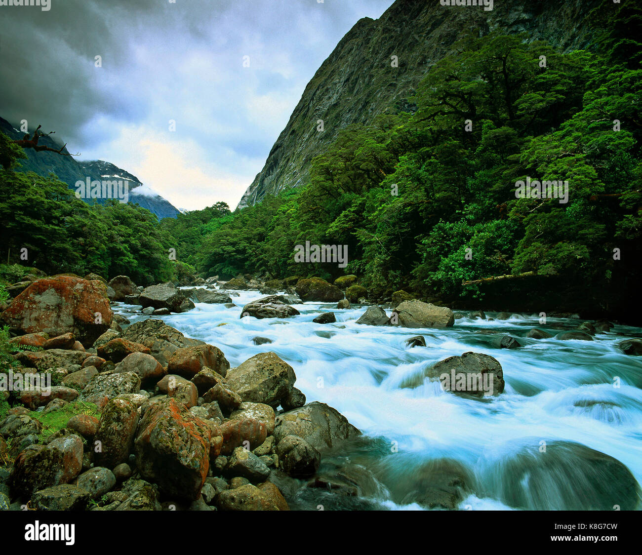 La Nouvelle-Zélande. Milford Sound. course rapide d'eau. Photo Stock