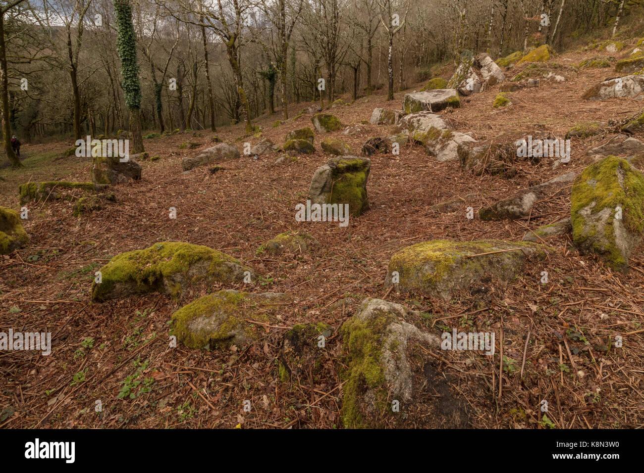 Hutte préhistorique des cercles, vieille maisons rondes, en bois, Lustleigh Cleave, east Dartmoor, Devon Photo Stock