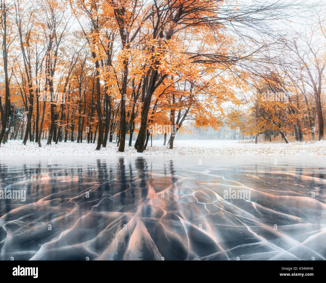Forêt de hêtre de montagne octobre avec la première neige de l'hiver et la glace bleue et des Photo Stock