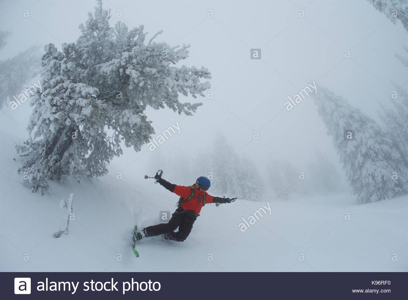 Un jeune garçon tombe tandis que le ski par temps brumeux, un voile blanc près de rime couvertes de conifères. Photo Stock