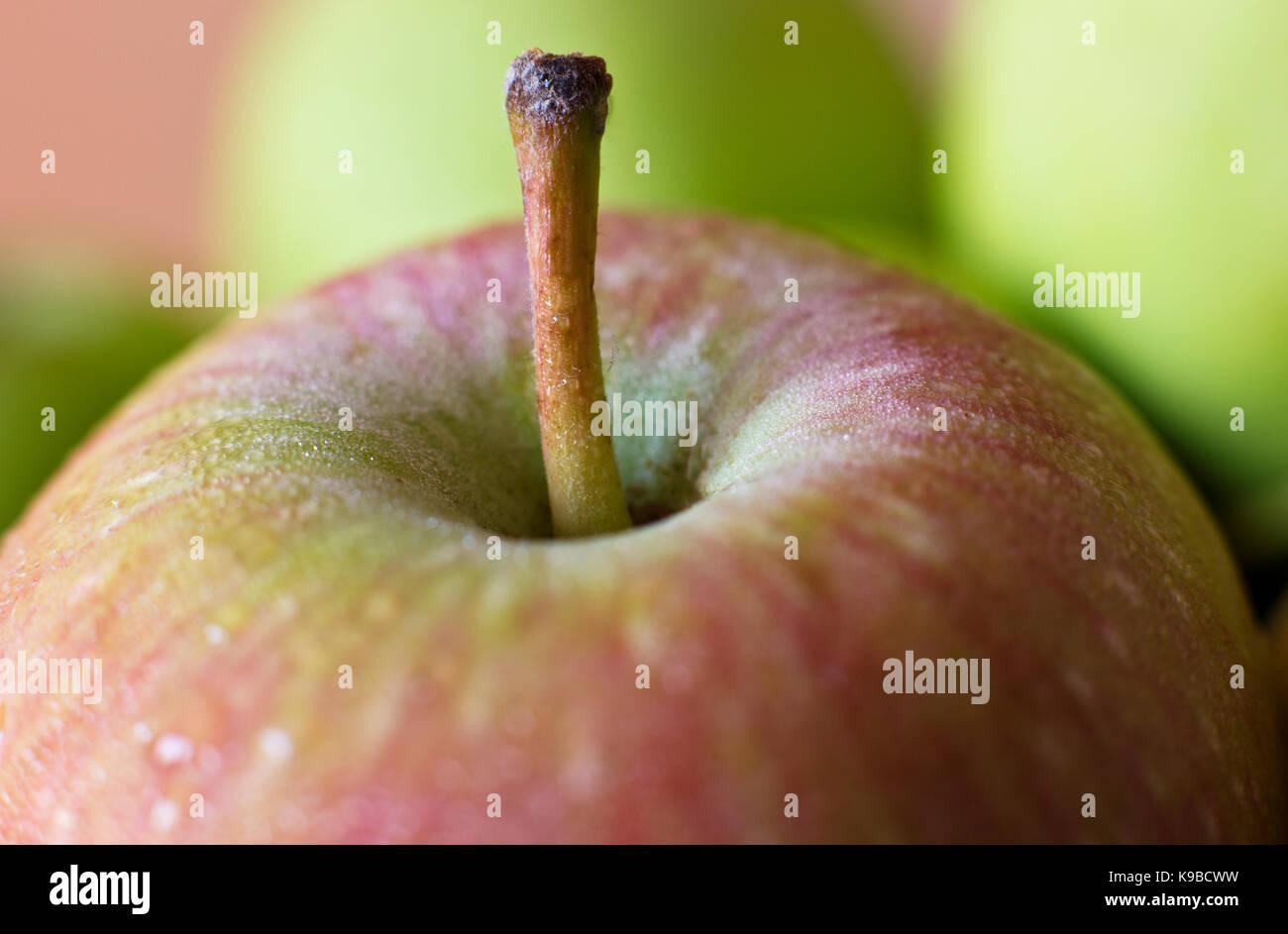 Une pomme verte dans les gouttes d'eau. La prise de vue macro. focus sélectif. Photo Stock