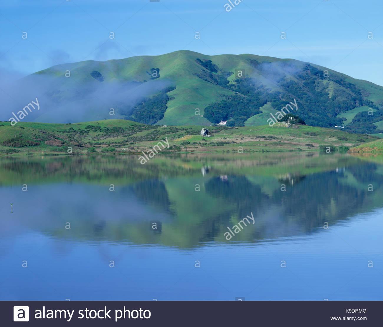 Montagne Noire et Nicasio réservoir, comté de Marin, en Californie Photo Stock