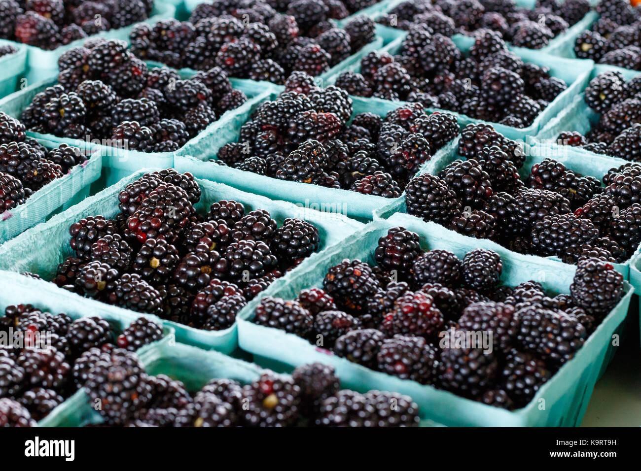 Les mûres fraîches produisent à un stand. Photo Stock
