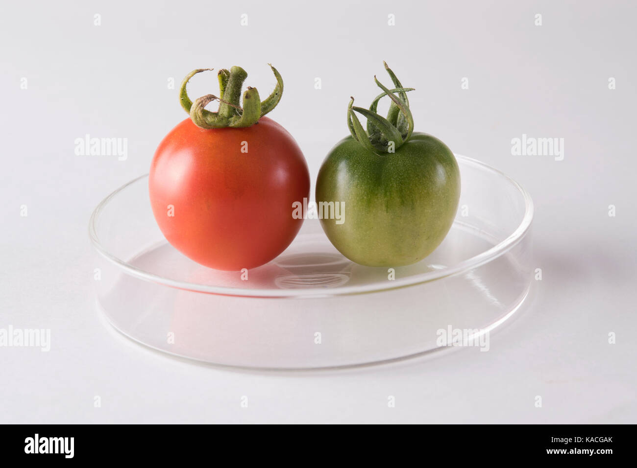 alimentation saine Photo Stock