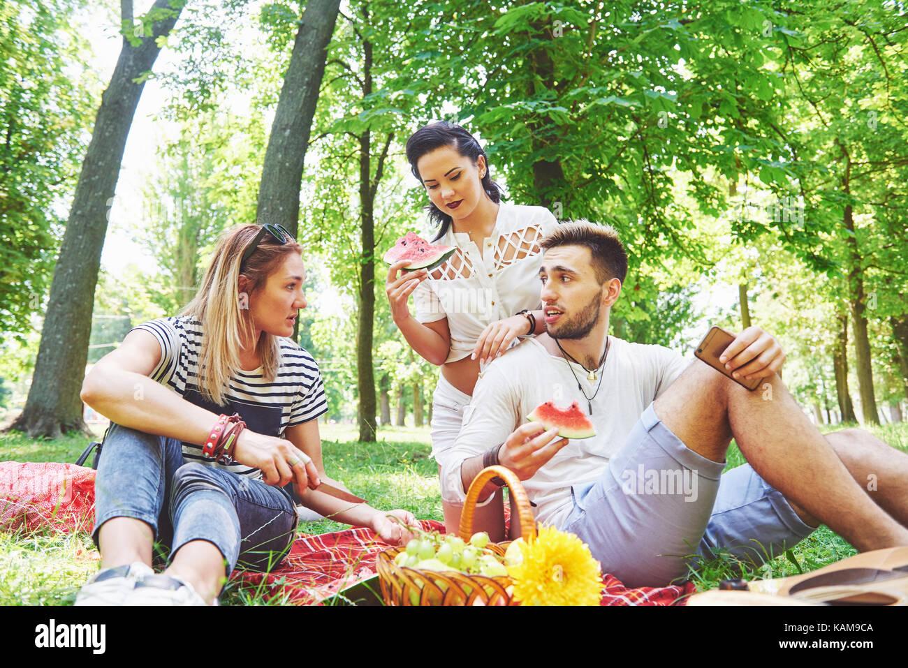 Groupe d'amis ayant pic-nic dans un parc sur une journée ensoleillée - les gens sortir, s'amuser Photo Stock