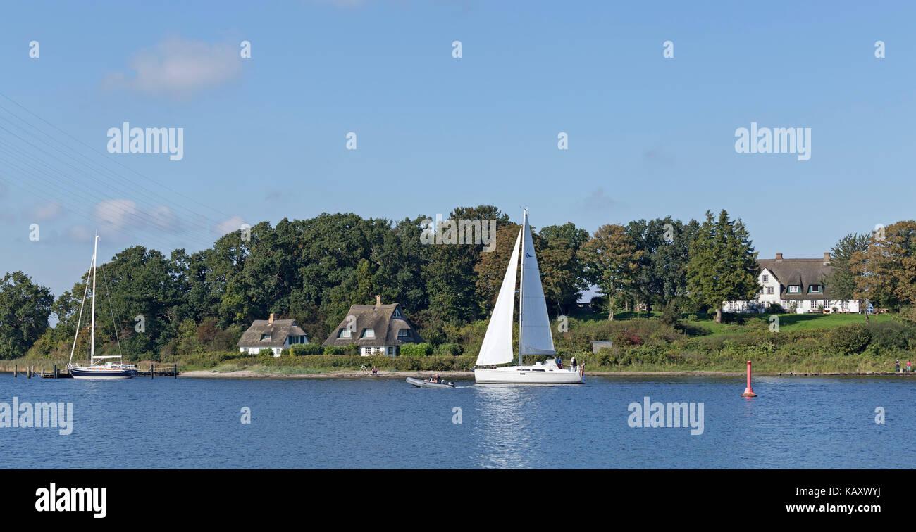 Bateau à voile, Rabelsund, Schlei, Schleswig-Holstein, Allemagne Photo Stock