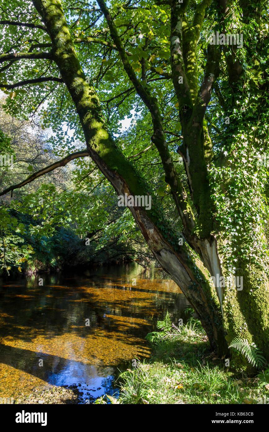 L'eau Glenrosa à l'arrière du Musée du patrimoine sur l'île d'Arran Banque D'Images
