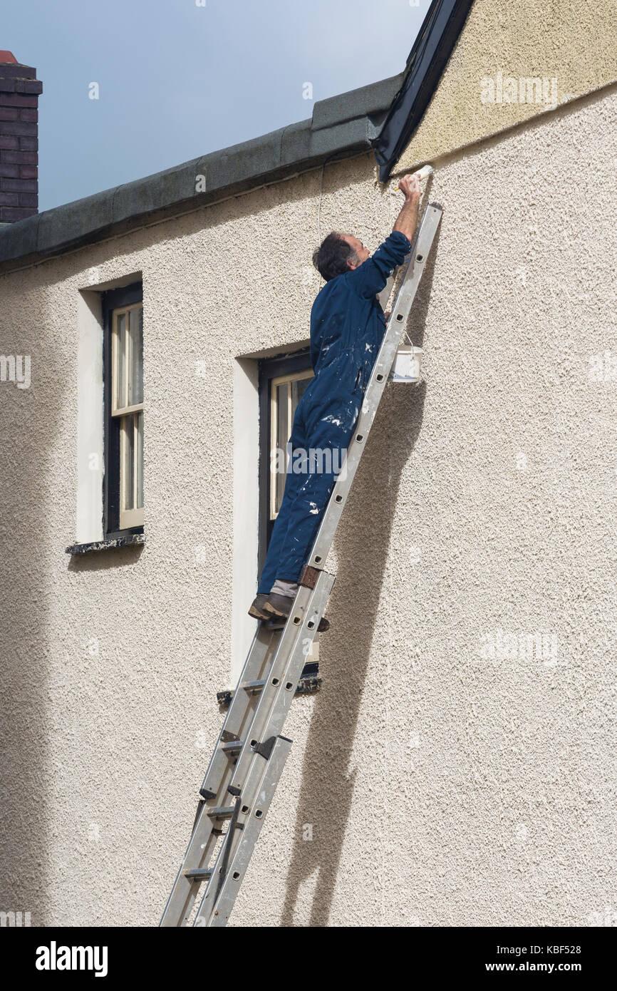 Sur L échelle De L Homme Peinture Mur Extérieur D Une Maison