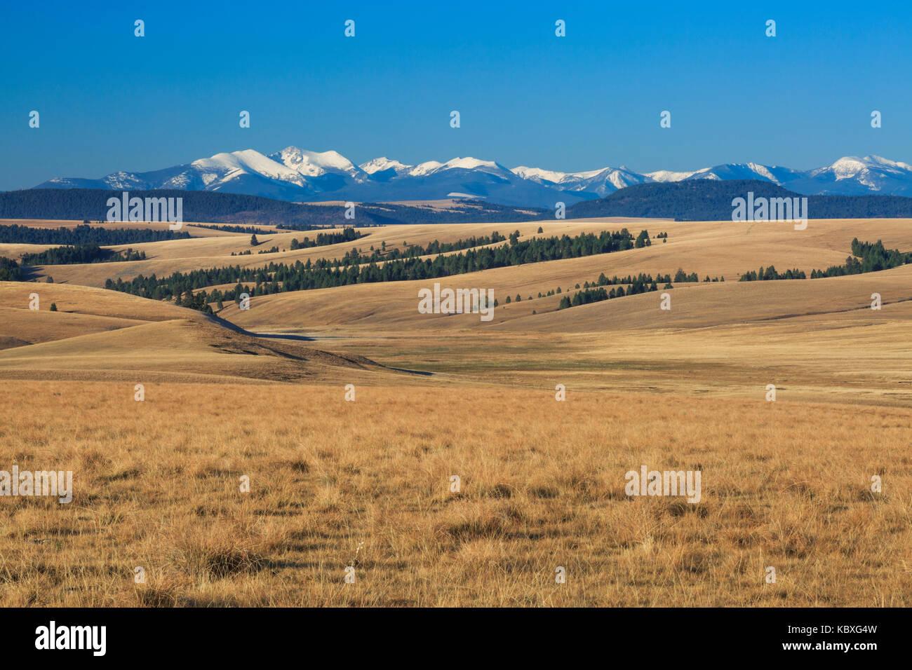 Flint Creek meadows dans la gamme et le bassin du ruisseau à proximité de avon, Montana Photo Stock