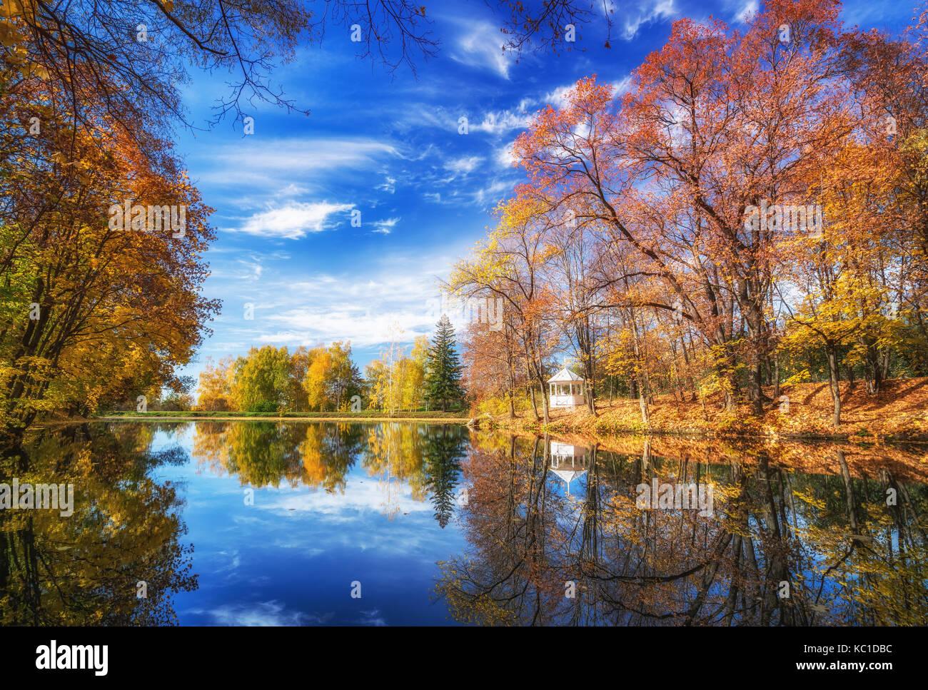 Automne ensoleillé dans le parc sur le lac Photo Stock