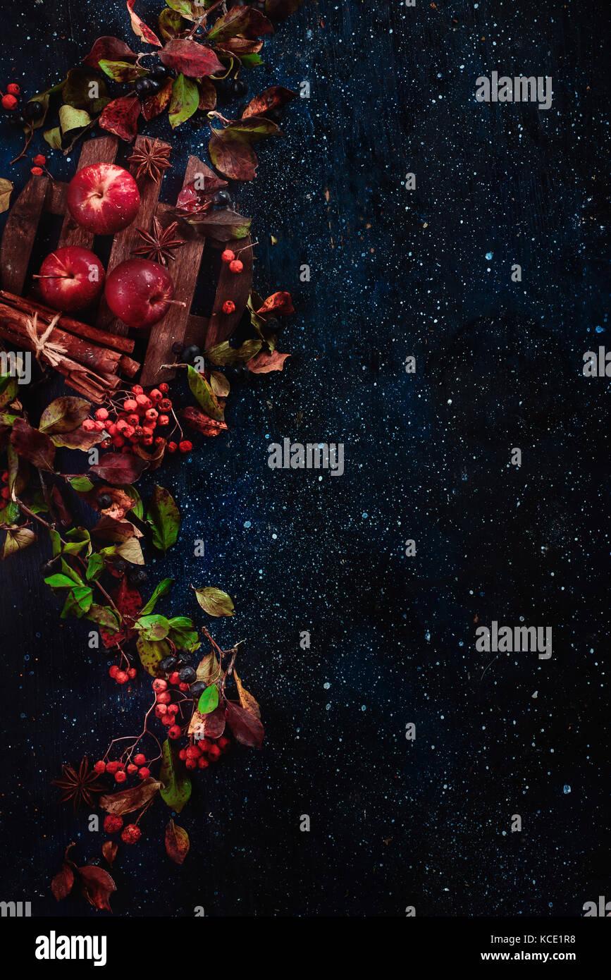 Floral background sombre avec peu de pommes, les feuilles d'automne, les baies, Rowan, cannelle et ingrédients Photo Stock