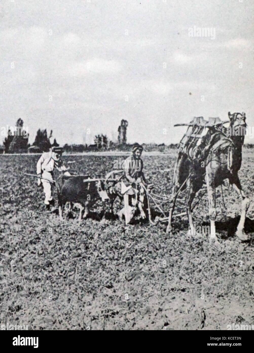 Fin du 19ème siècle ferme juif dans le quartier central d'Israël vers 1885 Photo Stock