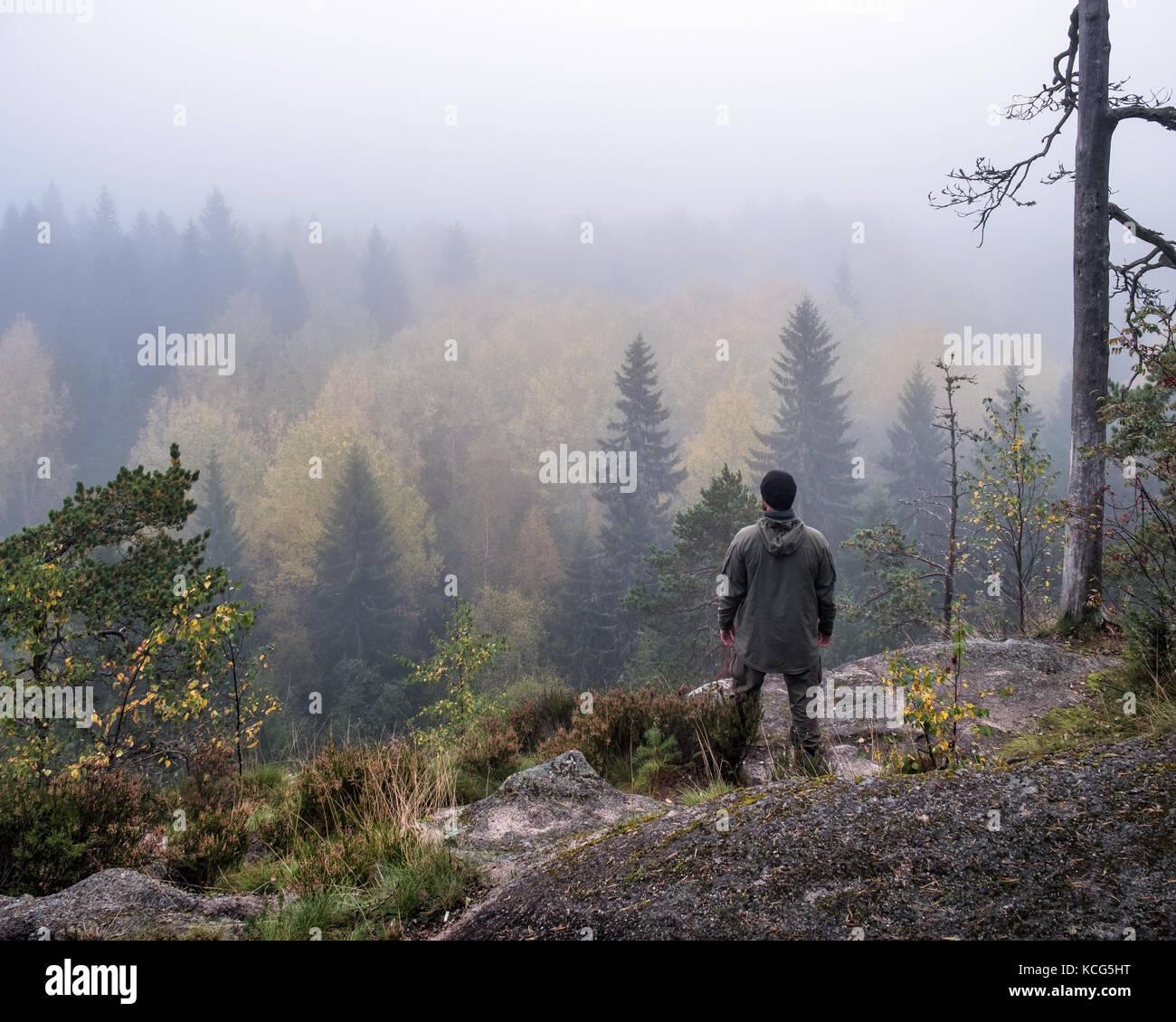 Homme randonnée dans la forêt au matin brumeux Banque D'Images