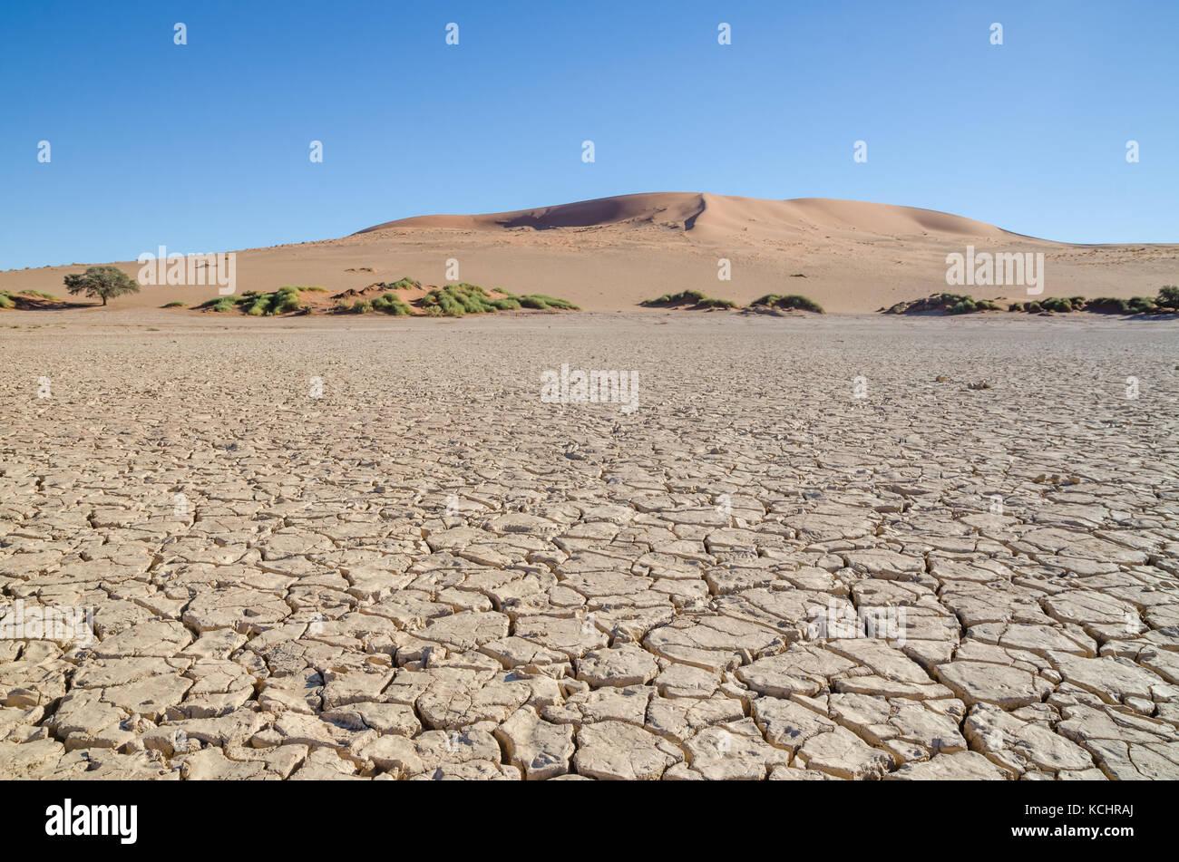 Belles hautes dunes de sable rouge et sec à la surface de l'argile fissurée célèbre sossusvlei Photo Stock