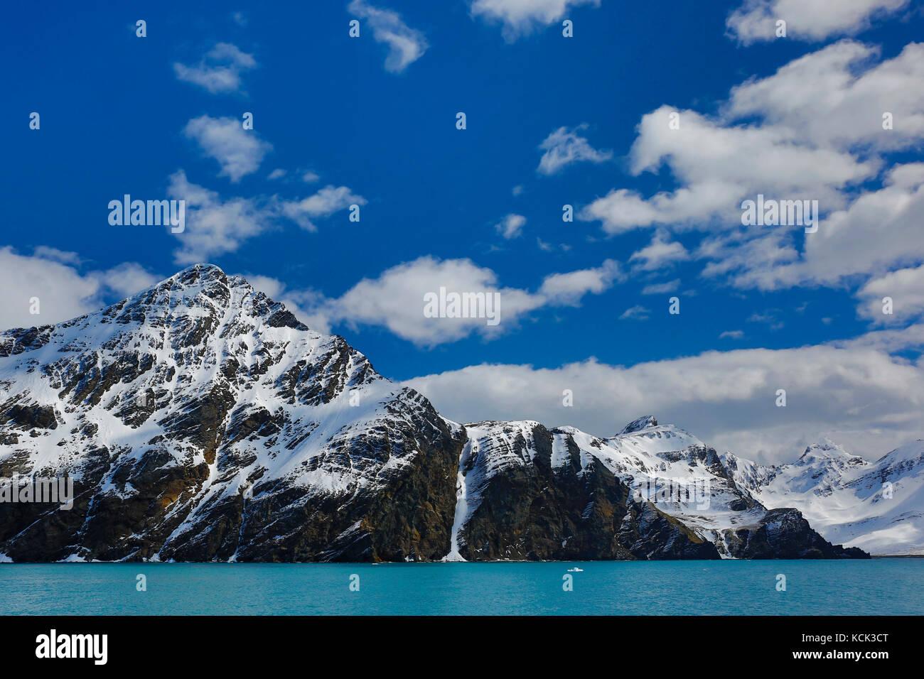 Sur une montagne avec de l'eau bleue dans la Géorgie du Sud et les îles Sandwich du Sud Photo Stock