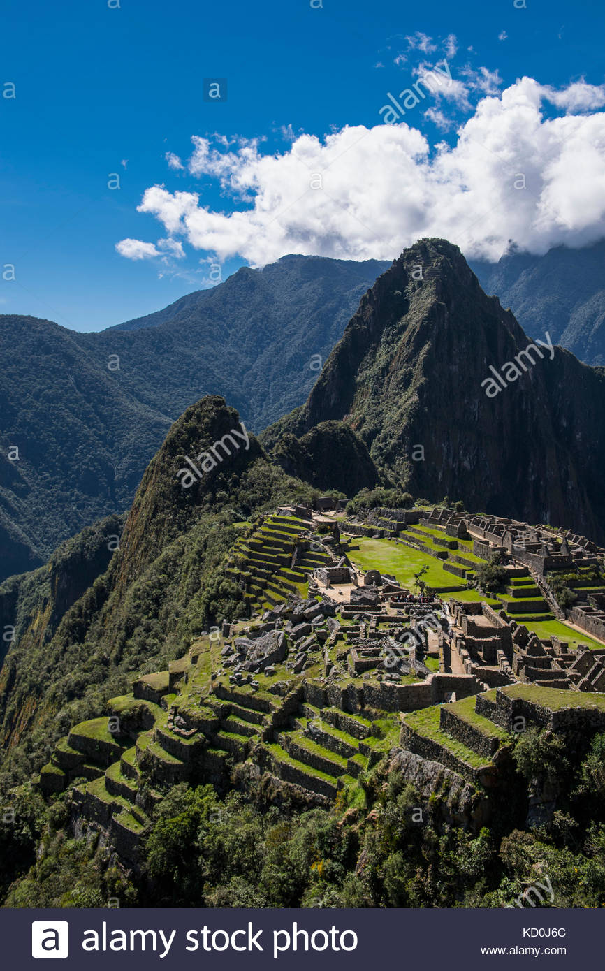 Portrait de ruines incas, Machu picchu, Cusco, Pérou, Amérique du Sud Photo Stock