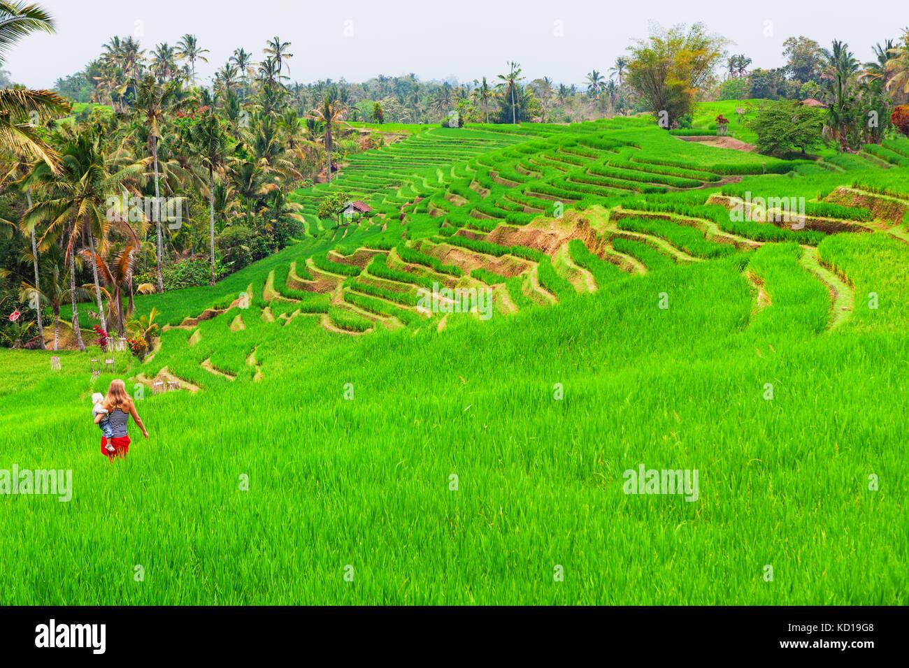 Maman avec bébé marche en terrasse avec une plantation de riz vert. Belle vue sur champs traditionnels. Photo Stock