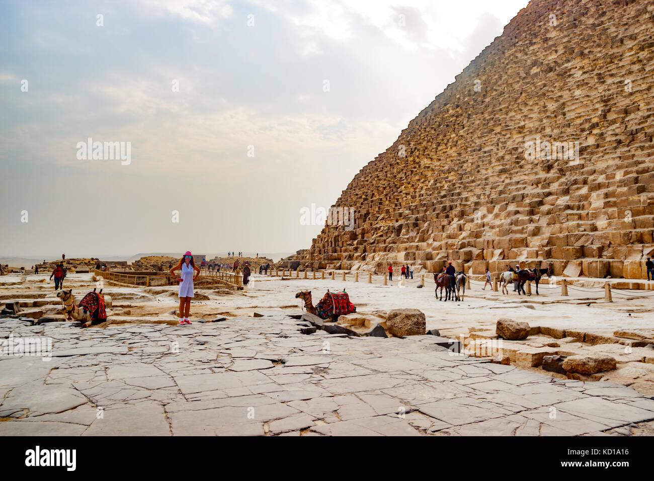 Camel près de l'ancienne pyramide au Caire, Egypte Photo Stock