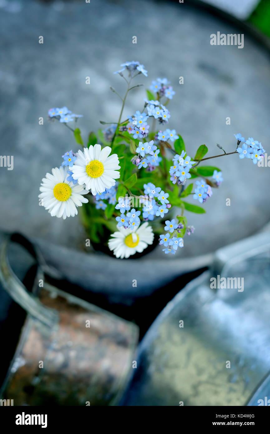 Produits frais, fleurs, naturel, natur, printemps, saison, Photo Stock