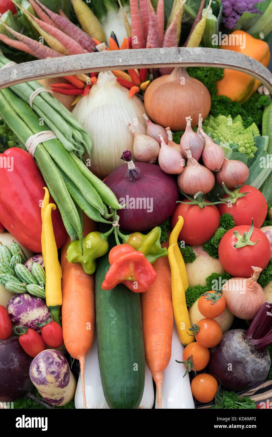 Trug légumes affiche à l'automne de Malvern, Worcestershire, Royaume-Uni Afficher Photo Stock