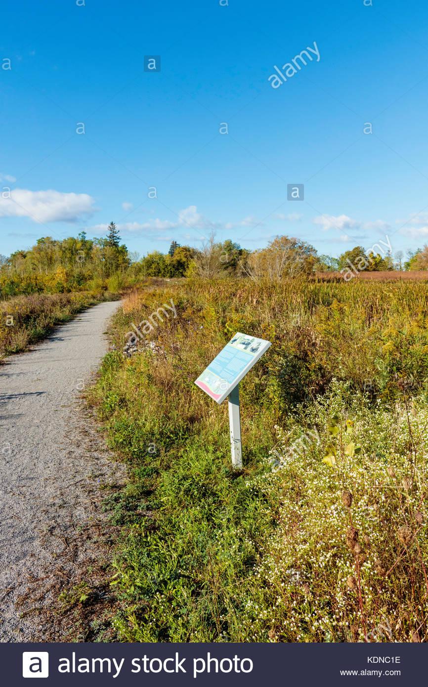 Le sentier de randonnée d'herbes hautes dans l'écosystème restauré Bob Hunter Memorial Photo Stock