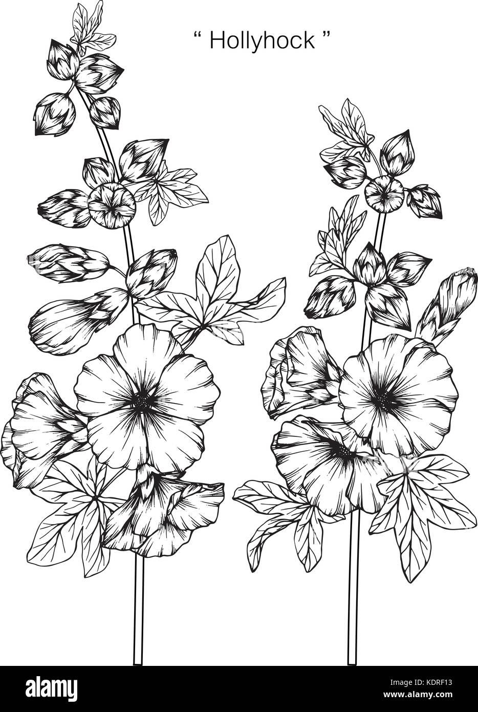 dessin de fleurs rose tr mi re illustration noir et blanc. Black Bedroom Furniture Sets. Home Design Ideas