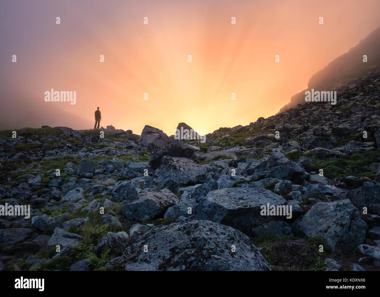 Homme debout devant de la lumière solaire à soirée d'été dans l'île de Lofoten Photo Stock