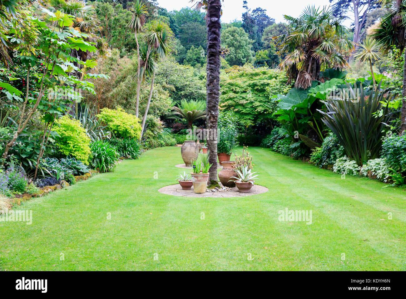 La plantation subtropicale et exotiques entourent la pelouse en contrebas des jardins subtropicaux à Abbotsbury, Photo Stock