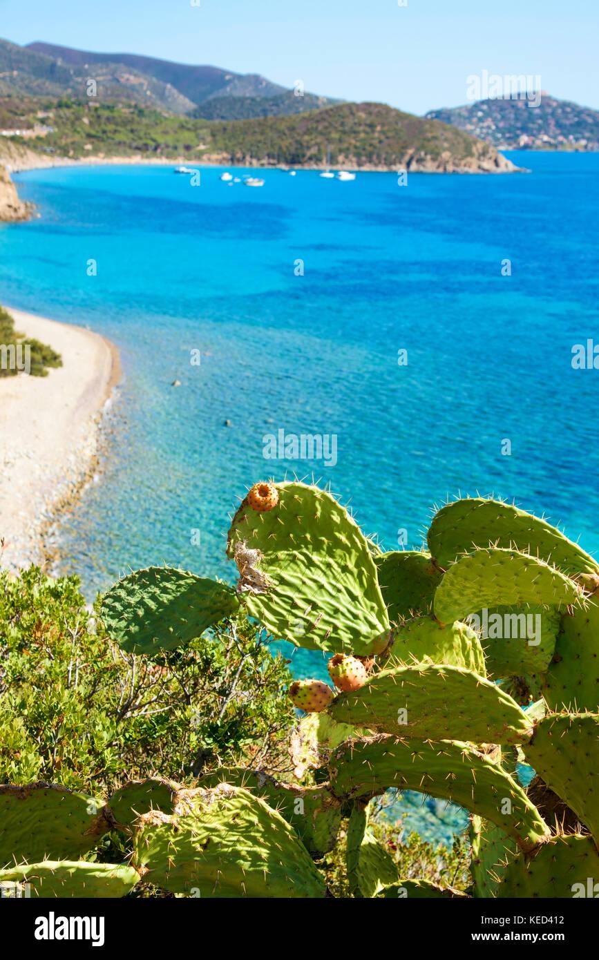 Une vue aérienne de la plage est canaleddus et la mer Méditerranée en Sardaigne, Italie, avec la Photo Stock