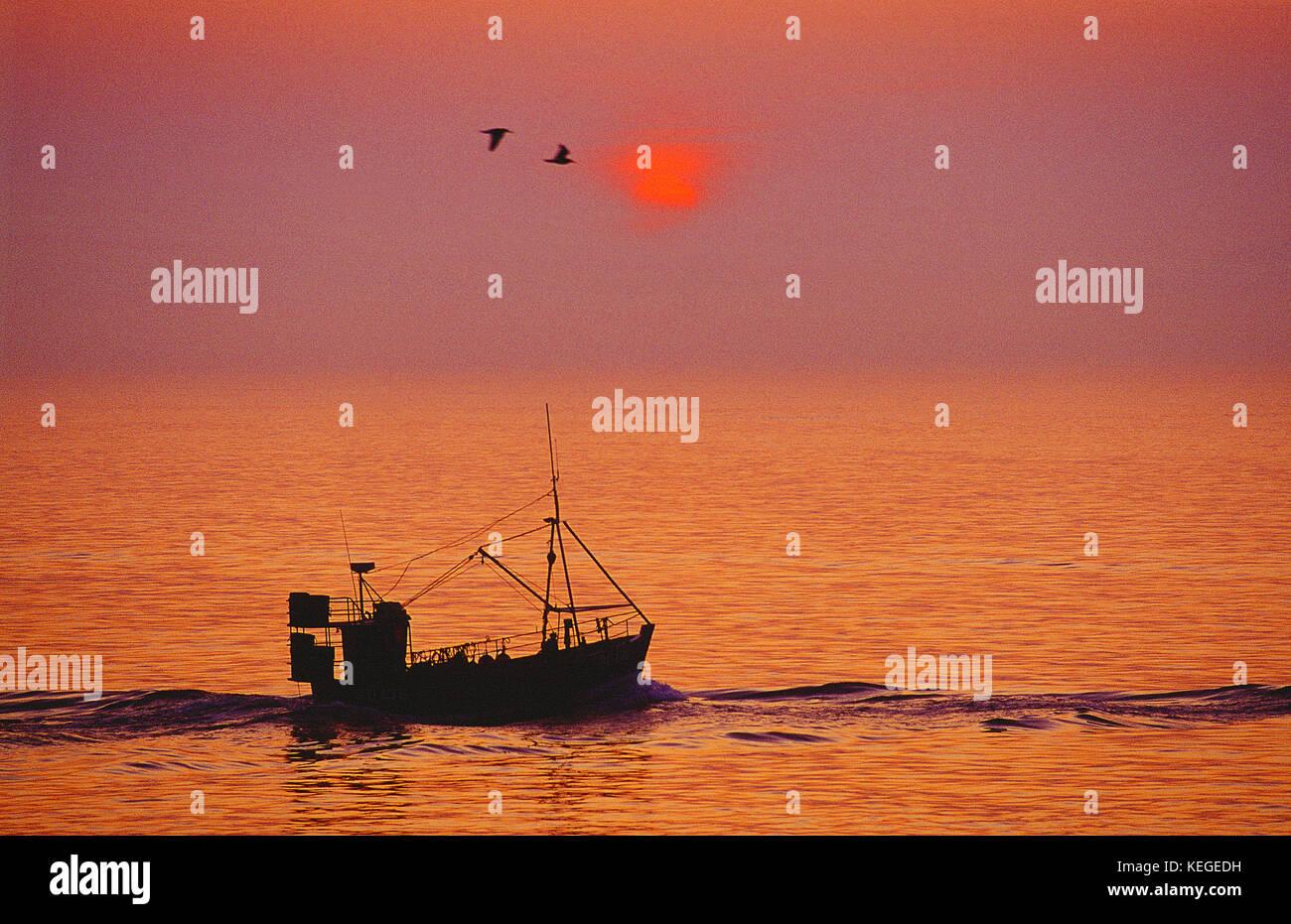 Petit bateau de pêche commercial vers la mer au lever du soleil. Channel Islands. Guernesey. Photo Stock