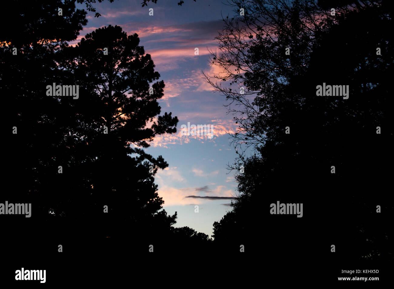 Coucher de soleil avec nuages rose et un nuage sombre Photo Stock