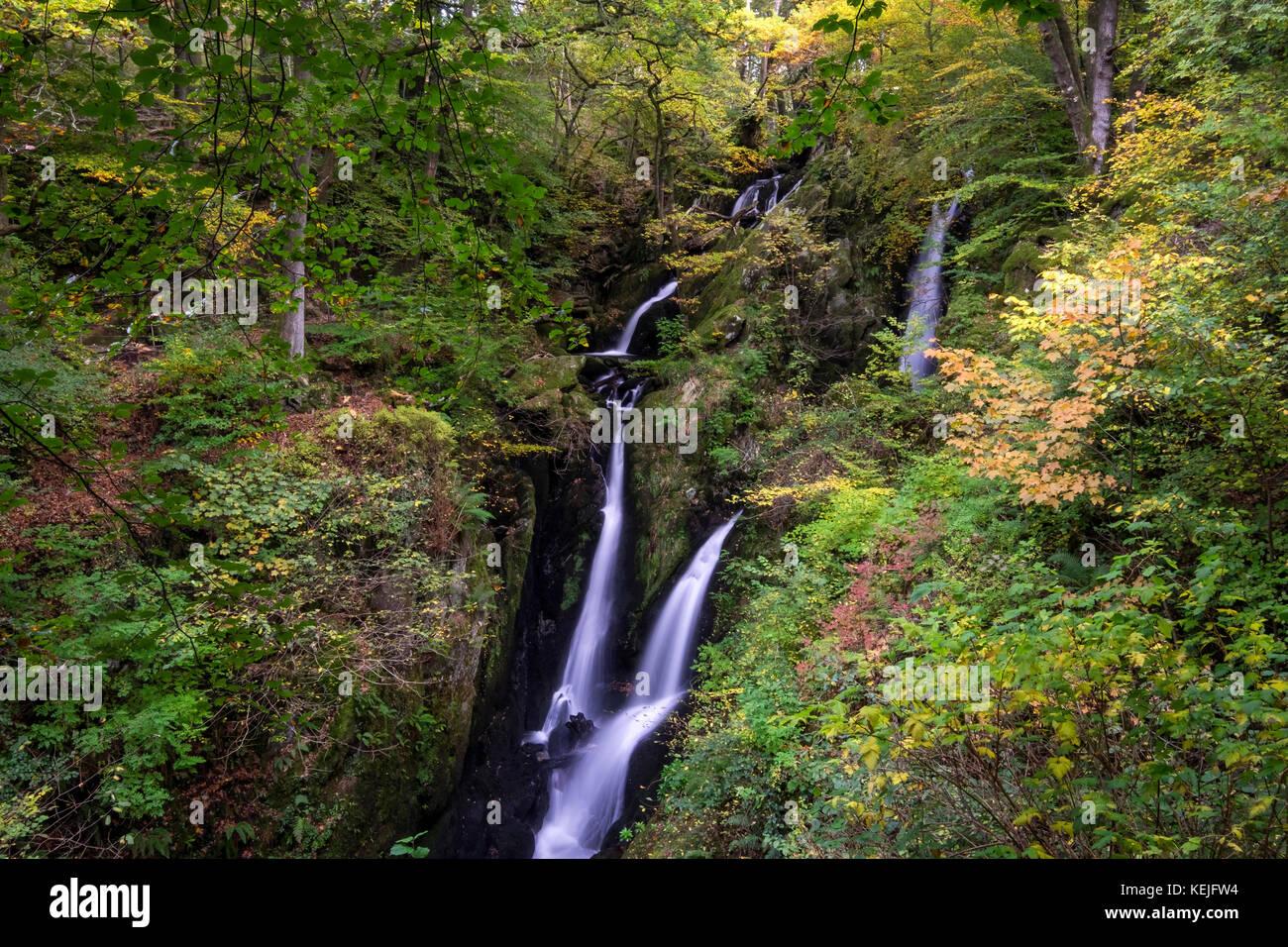 Ghyll Stock cascade de la Force à l'automne, près de Ambleside, Parc National de Lake District, Cumbria, Photo Stock