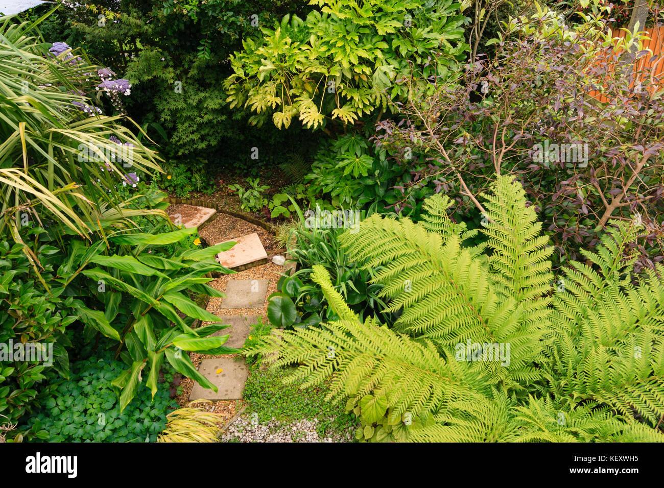 Photo Petit Jardin Exotique vue aérienne de frais généraux d'un petit jardin exotique de