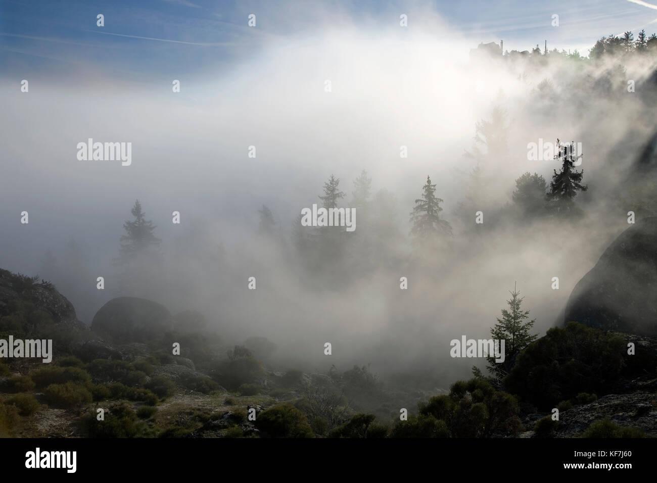Le brouillard dans une vallée à la montagne Serra da Estrela, dans le centre du Portugal. à la fin Photo Stock