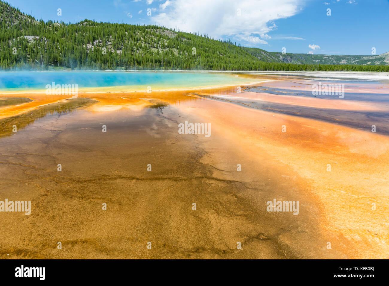 Les tapis microbiens ventilateur hors du centre du Grand Prismatic Spring dans le parc national de Yellowstone, Wyoming Banque D'Images