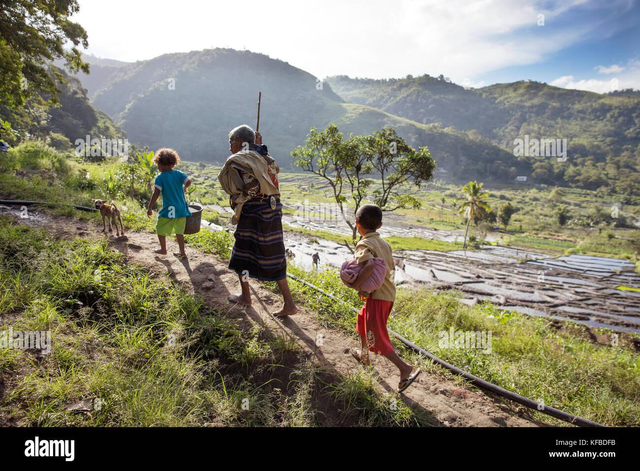 L'Indonésie, flores, un grand-père marche avec ses petits-enfants et le chien dans waturaka village Photo Stock