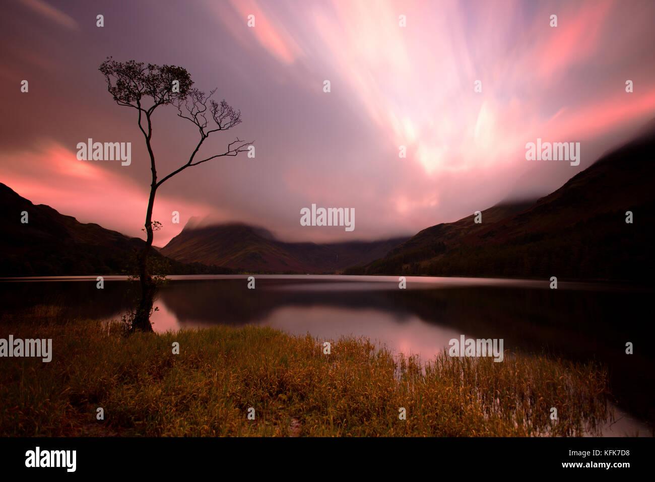 Arbre isolé sur la hure, Cumbria, lake district. l'Angleterre. Banque D'Images