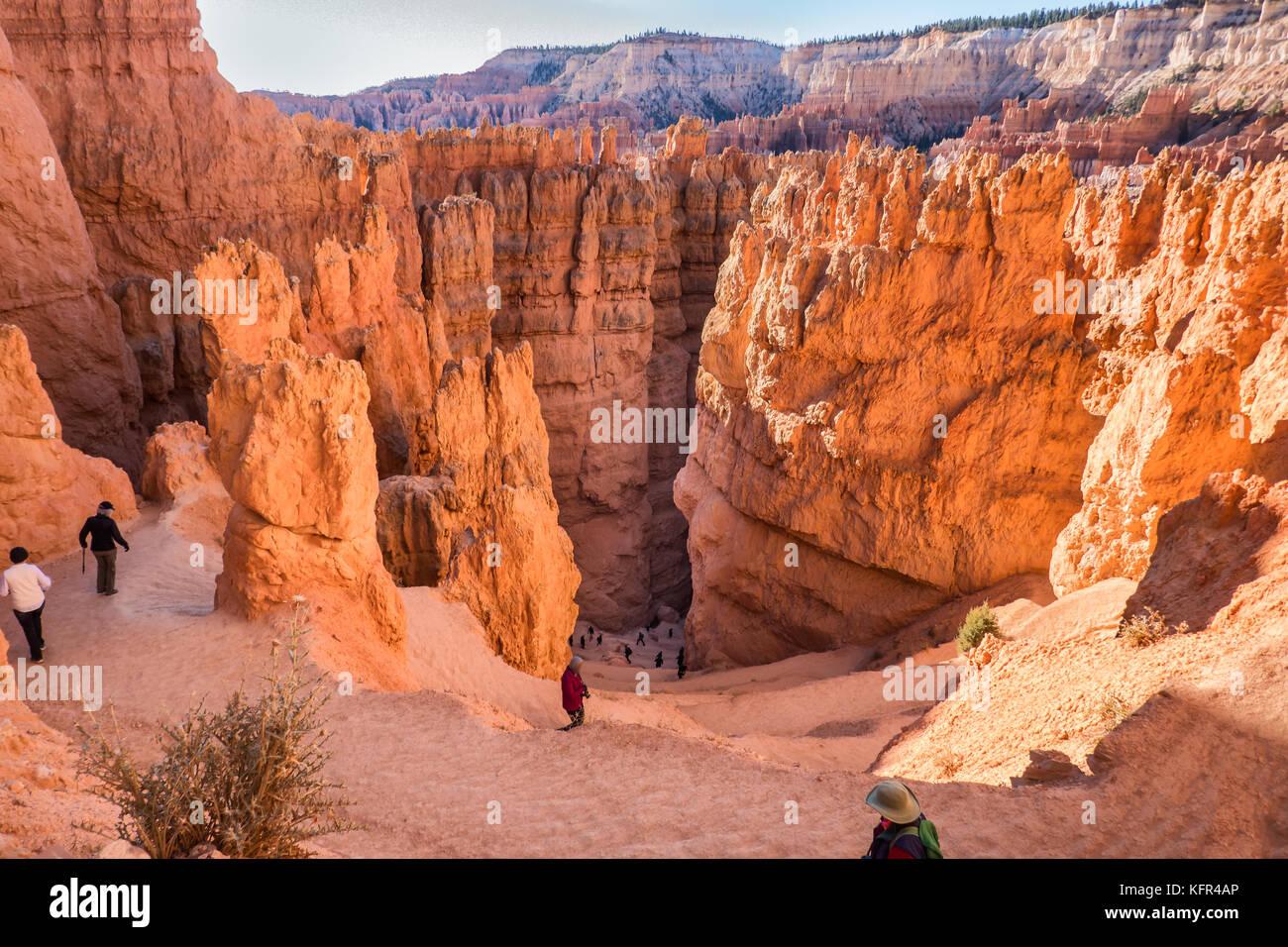 Bryce Canyon jusqu'à Wall Street dans l'Utah, aux Etats-Unis Photo Stock