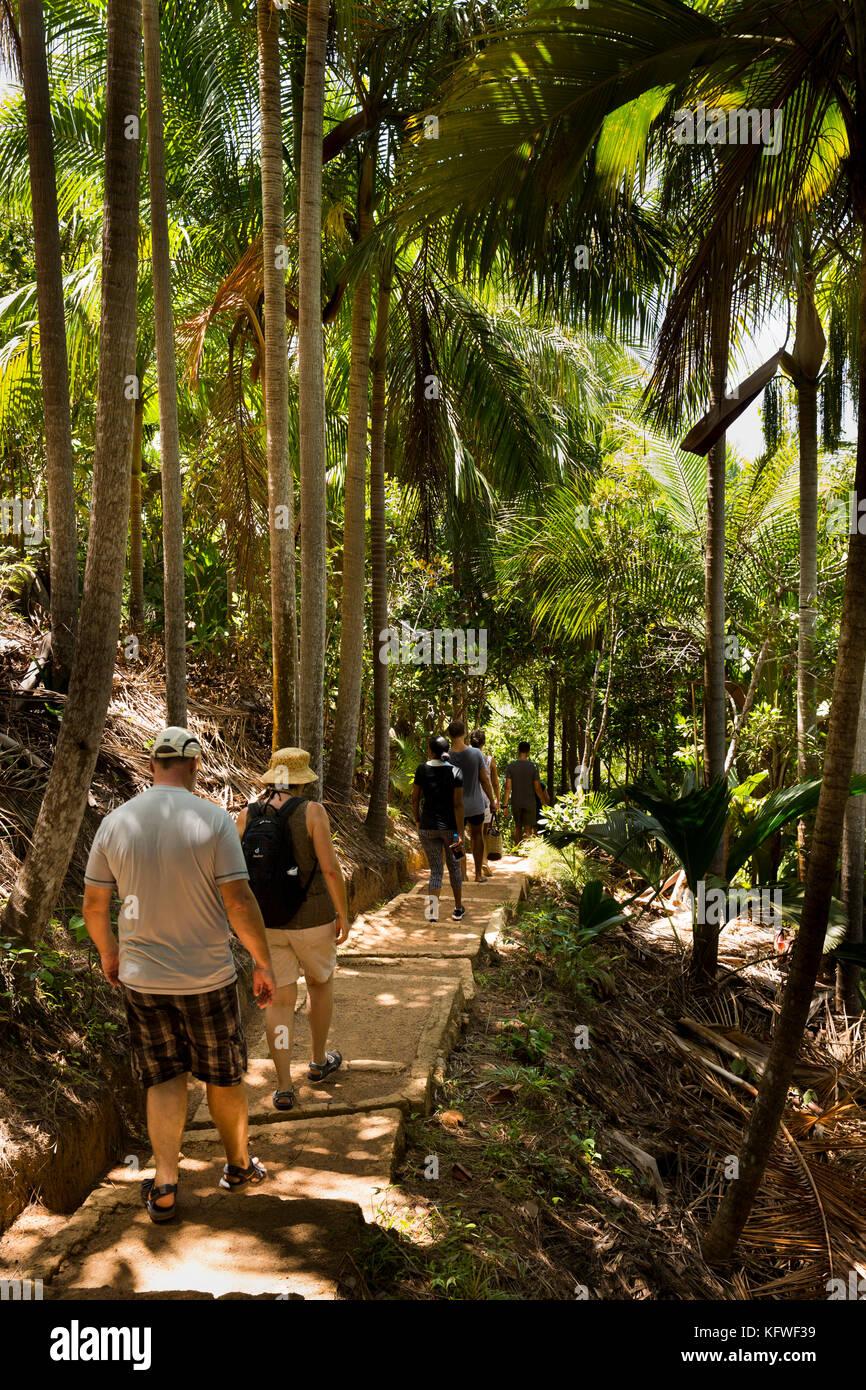 Les Seychelles, Praslin, Anse Marie-Louise, Fond Ferdinand réserve naturelle, les touristes sur sentier nature Photo Stock