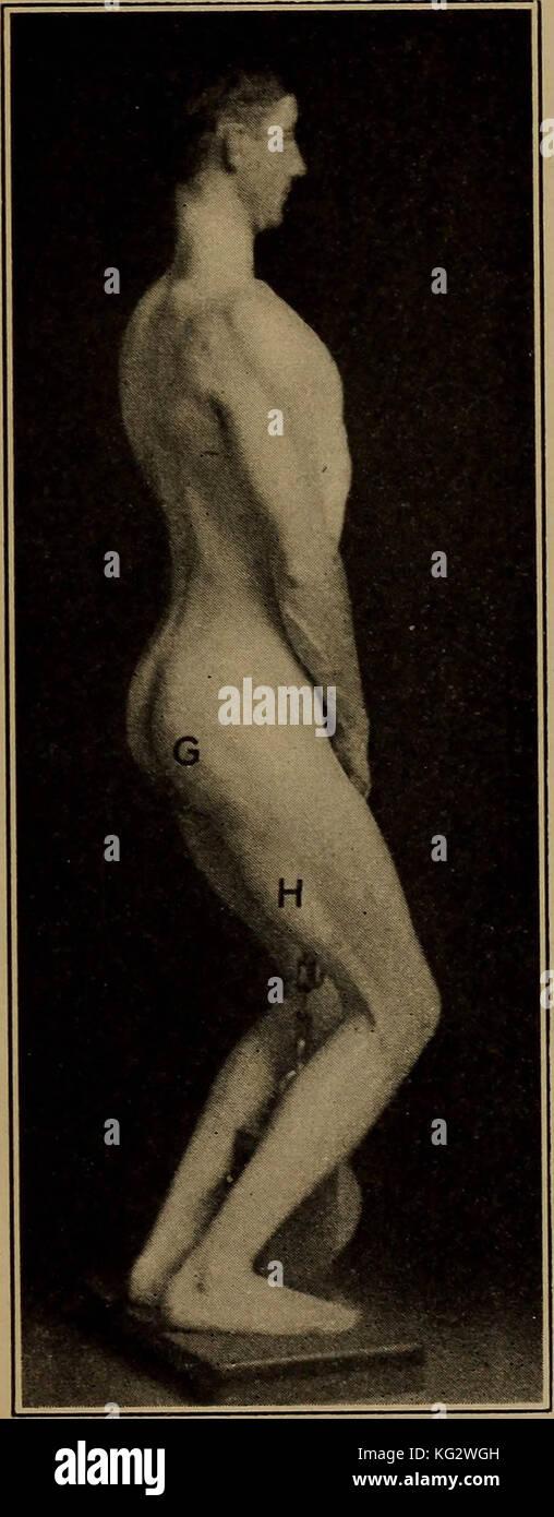 Charmant Tanz Anatomie Und Kinesiologie Galerie - Anatomie Von ...