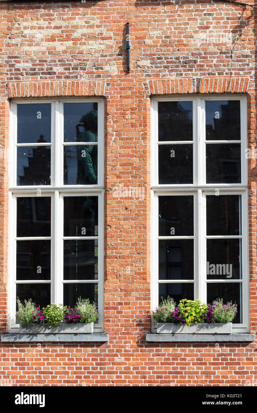deux fen tres de la maison de brique une fa ade de maison la vue avant une pose d 39 une brique. Black Bedroom Furniture Sets. Home Design Ideas
