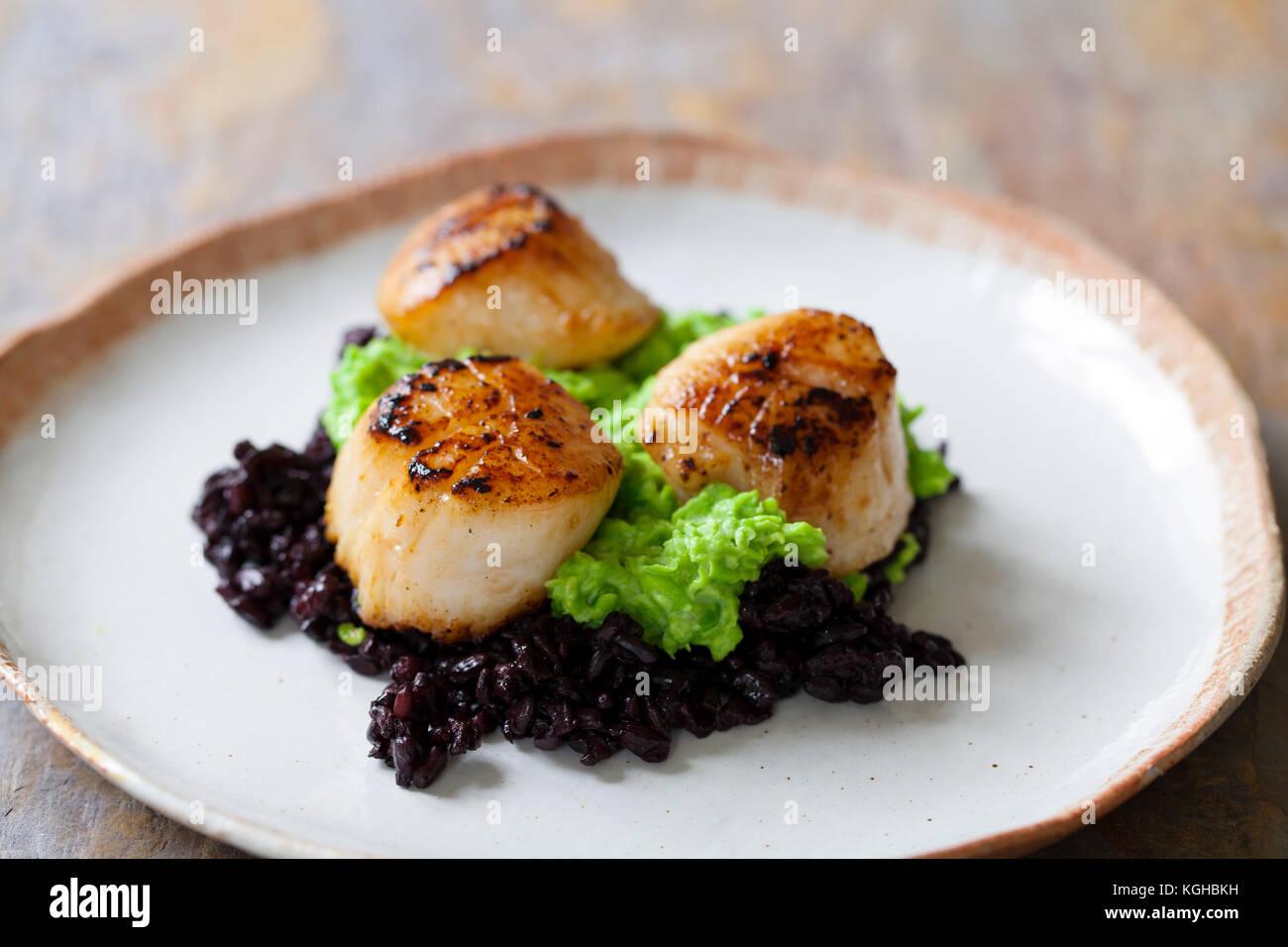 Les pétoncles avec du riz noir et purée de pois interdit Photo Stock
