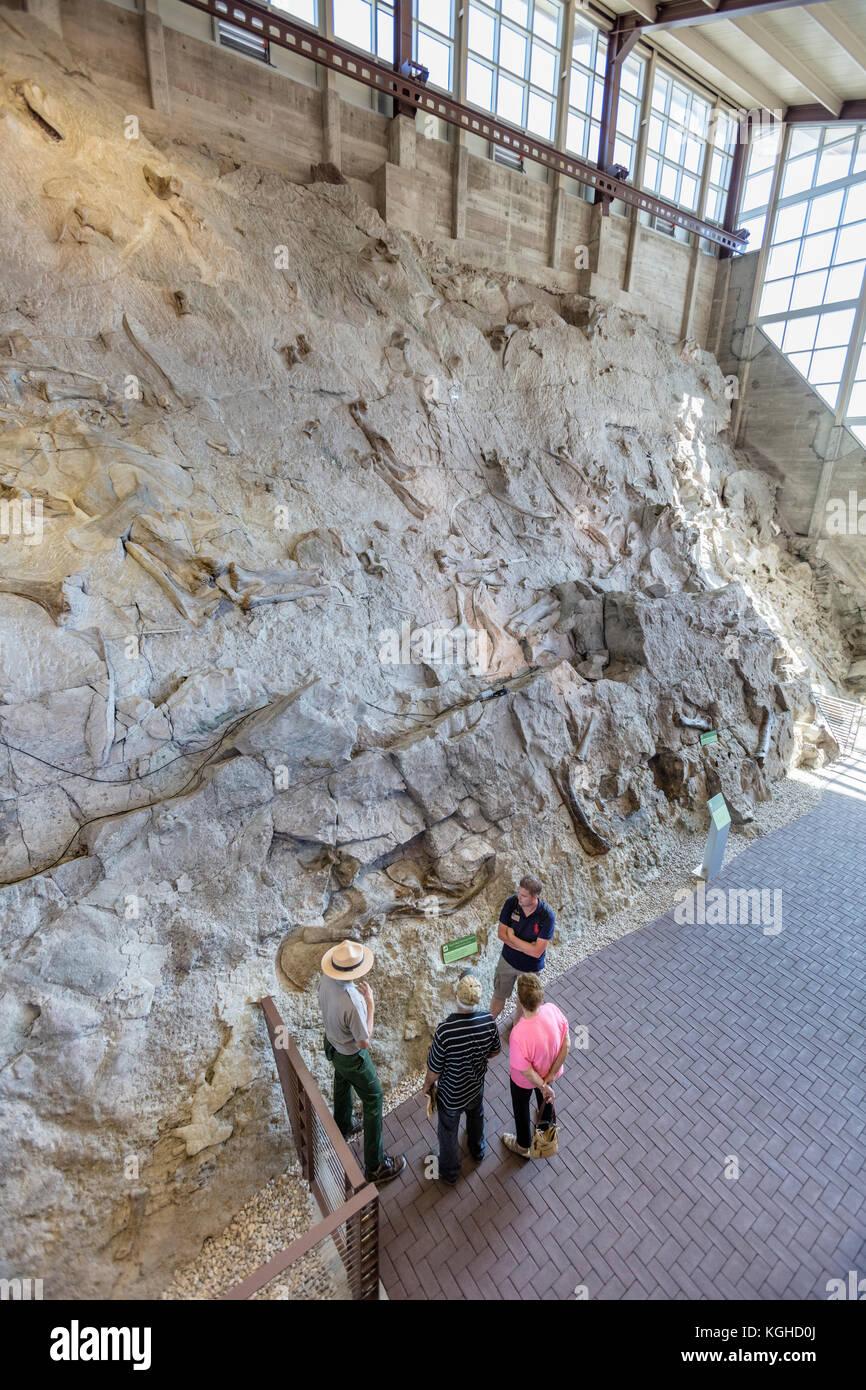 Visiteurs & fossiles de dinosaures à la carrière - Dinosaur National Monument, ut Photo Stock