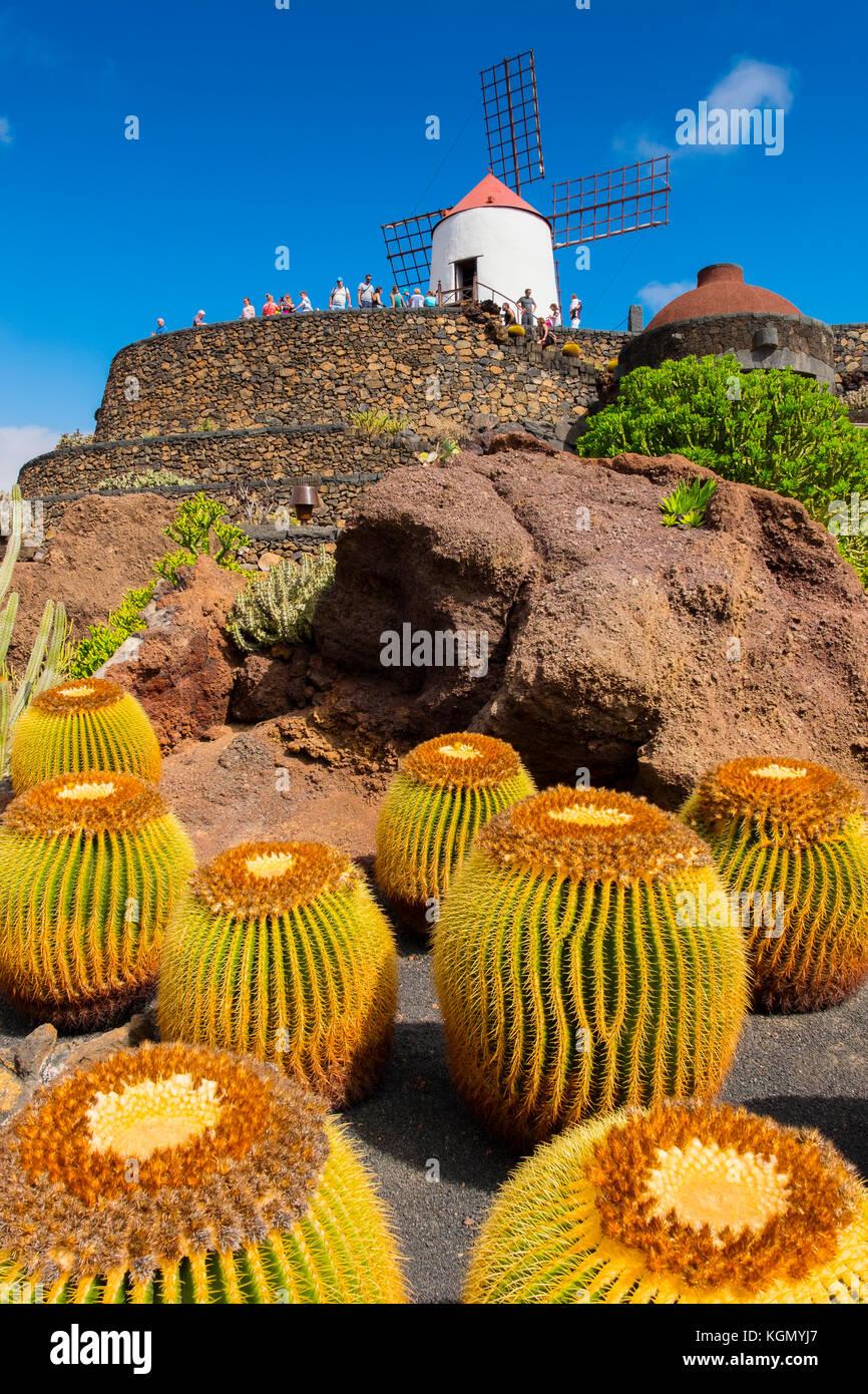 Jardin de Cactus. Jardin Cactus conçu par Cesar Manrique, Risco de las Nieves, Guatiza. Île de Lanzarote. Îles Canaries Banque D'Images