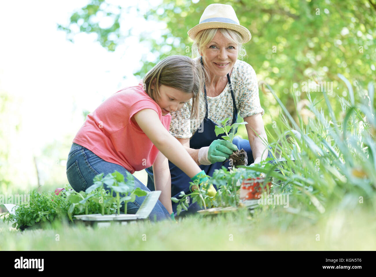Grand-mère et petite-fille gardening together Photo Stock
