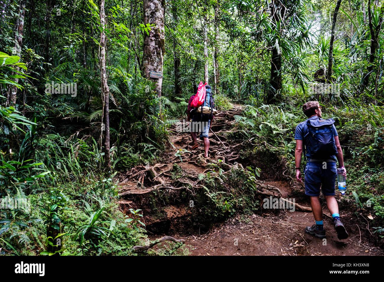 Mont Rinjani Lombok en Indonésie Photo Stock
