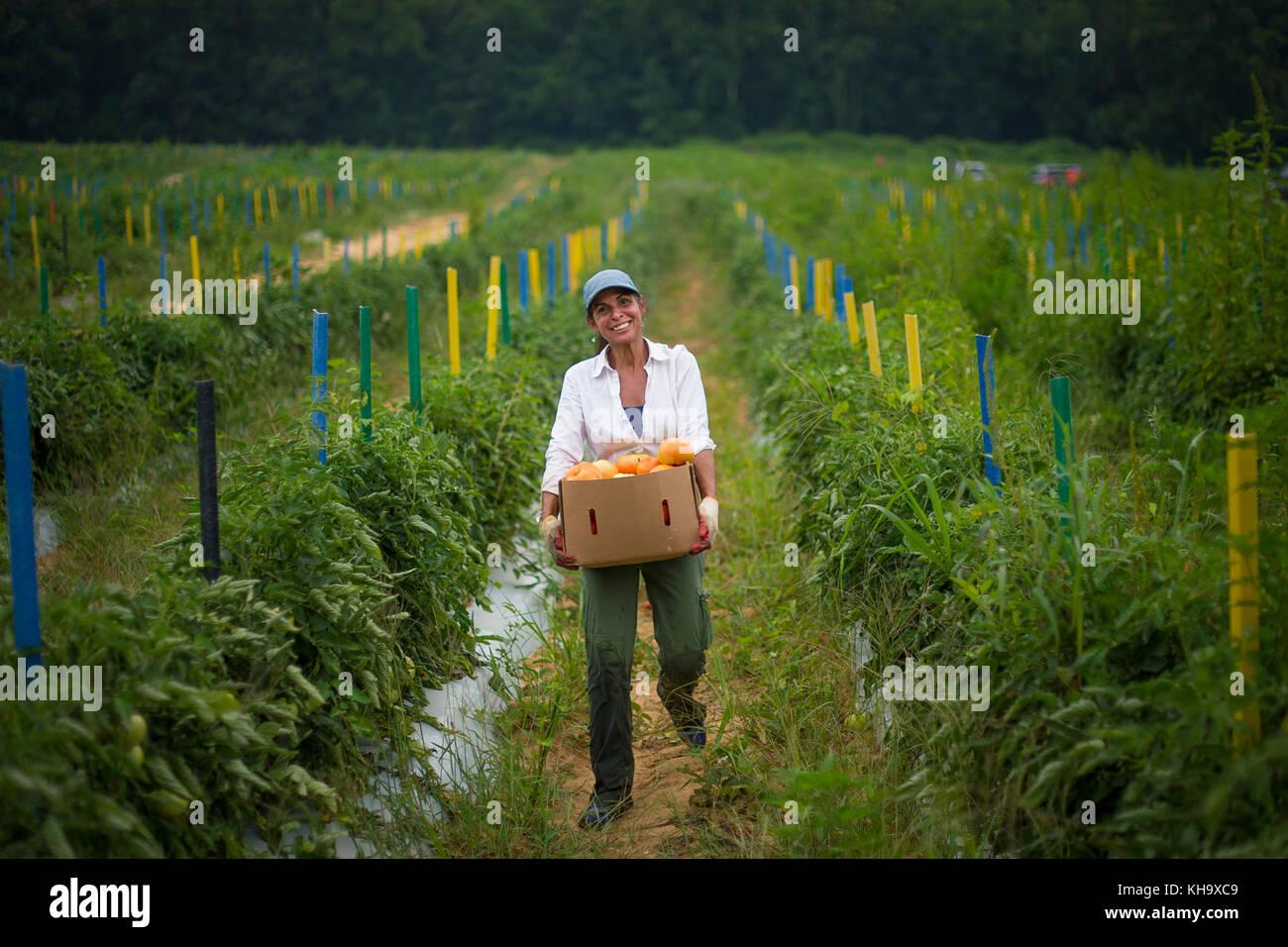 Ministère de l'agriculture des États-Unis (USDA) développement rural (rd) Ingrid ripley tire Photo Stock