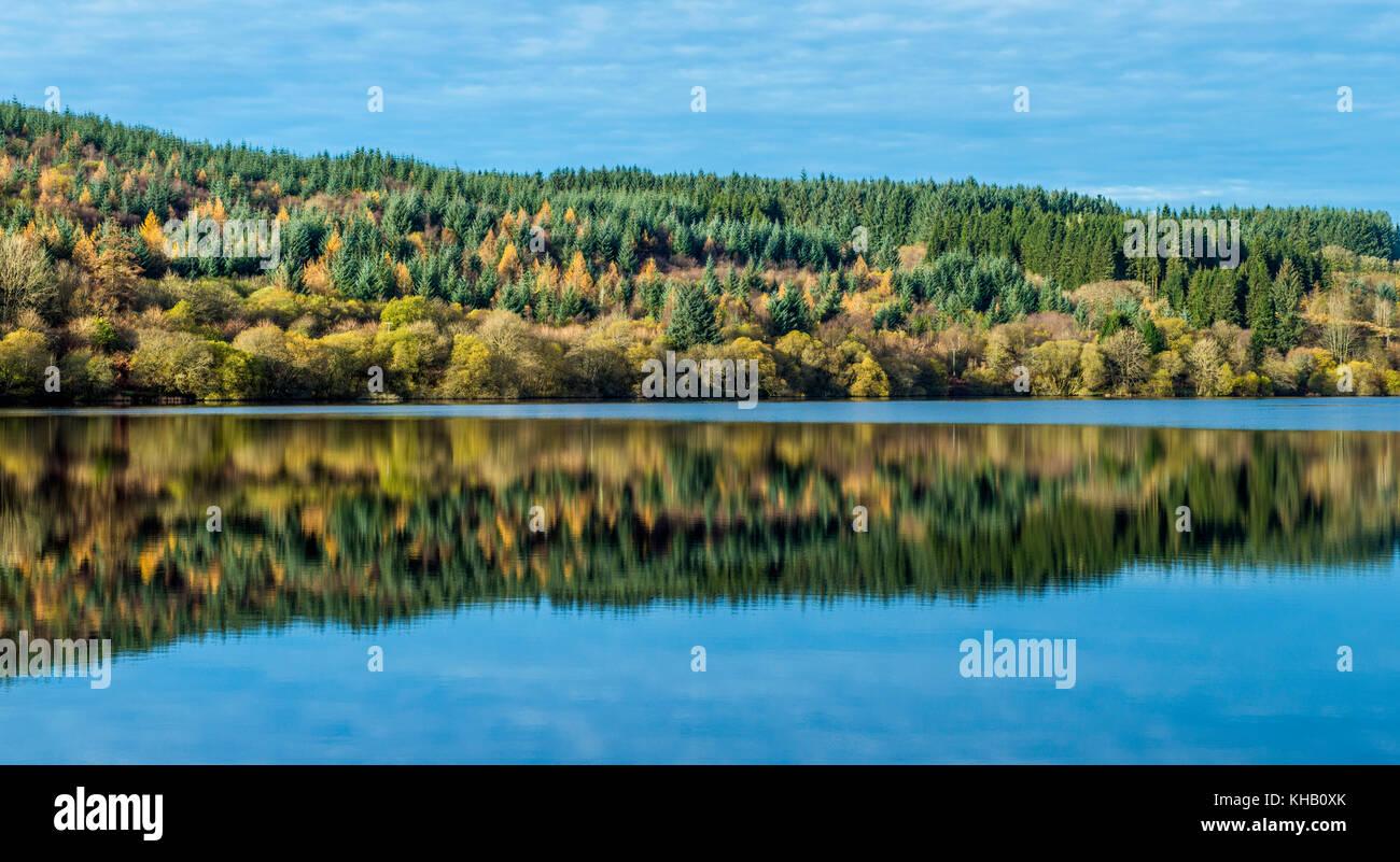 Arbres se reflétant dans le lac Llwyn Onn Parc national de Brecon Beacons au Pays de Galles du sud Photo Stock