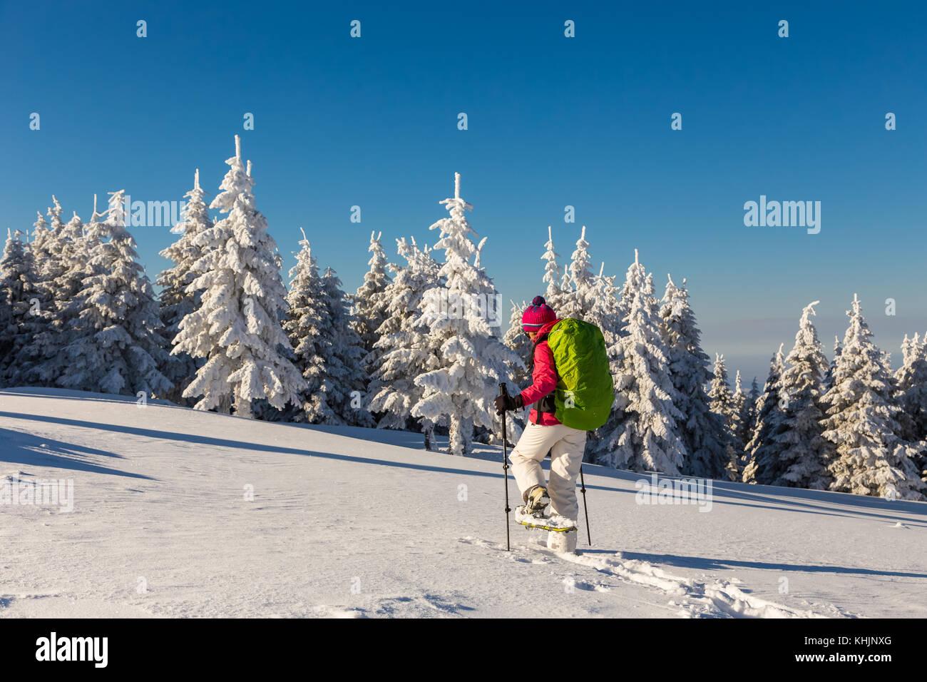 Femme de la raquette dans la neige profonde, à l'aide de poteaux, sur une journée ensoleillée Photo Stock